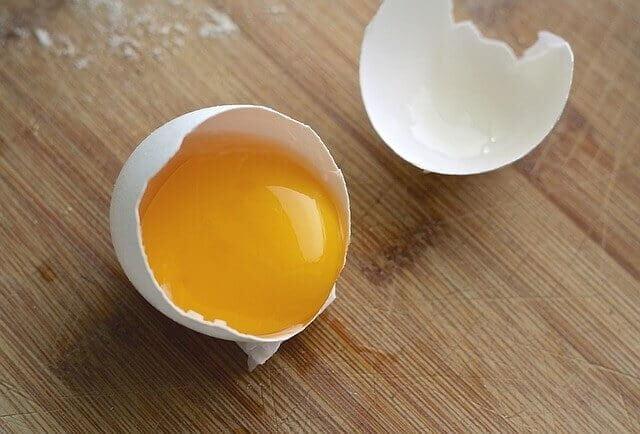 Cara Memberikan Kuning Telur Pada Kucing