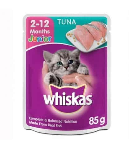 Jenis-Jenis Makanan Kucing