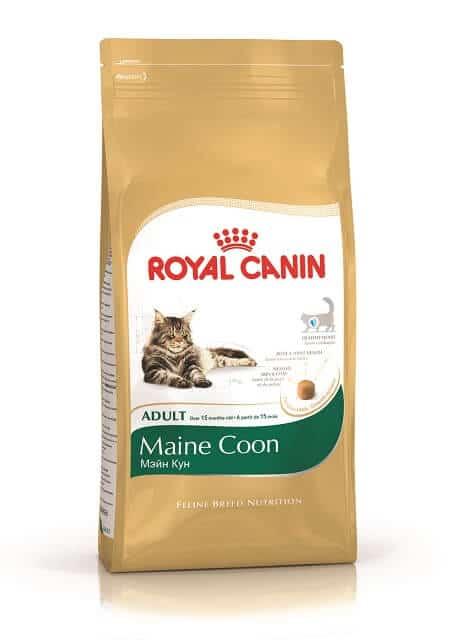 Makanan Kucing Royal Canin Maine Coon